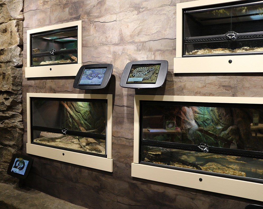 Schramm State Park uses touchscreens to educate and inform visitors about the flora and fauna of the surrounding area.